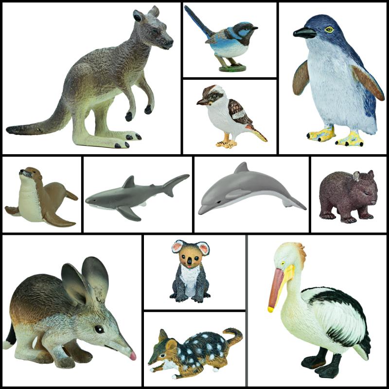 animal models