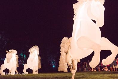 Fiers a Cheval 1, Enlighten Canberra 2014