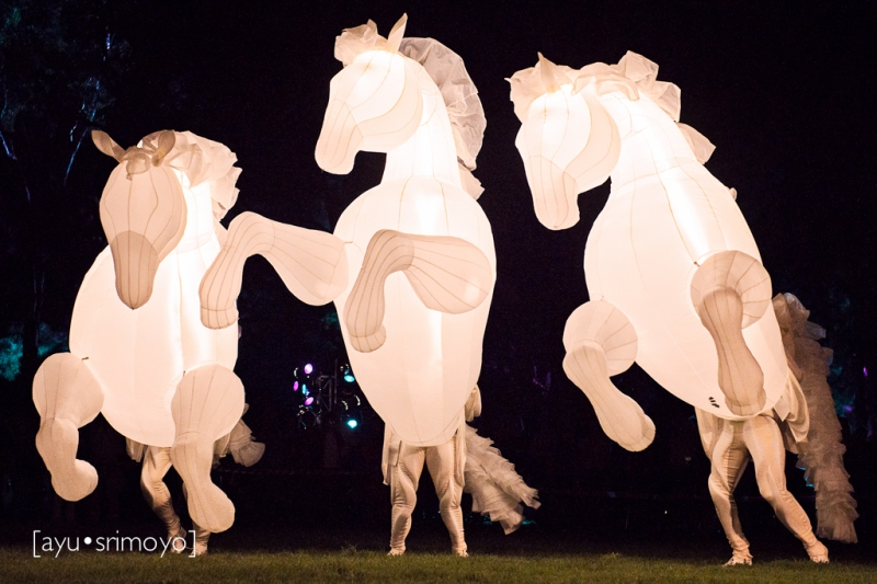 Fiers a Cheval 1, Enlighten Canberra 2014